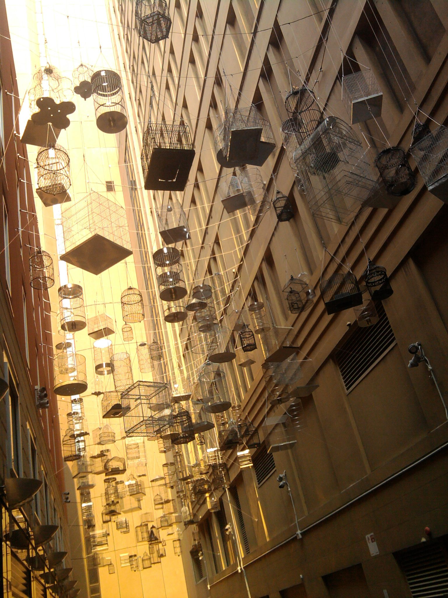 Photo of cages in Martin Place